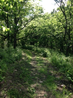 Teter Nature Trail